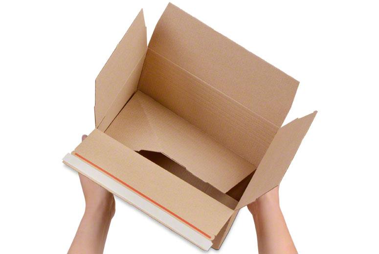 NIVEAU-BOX S (FEFCO 0701)