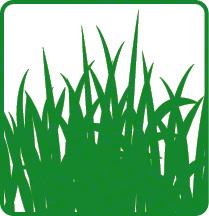 Icon Graspapier Rohstoff