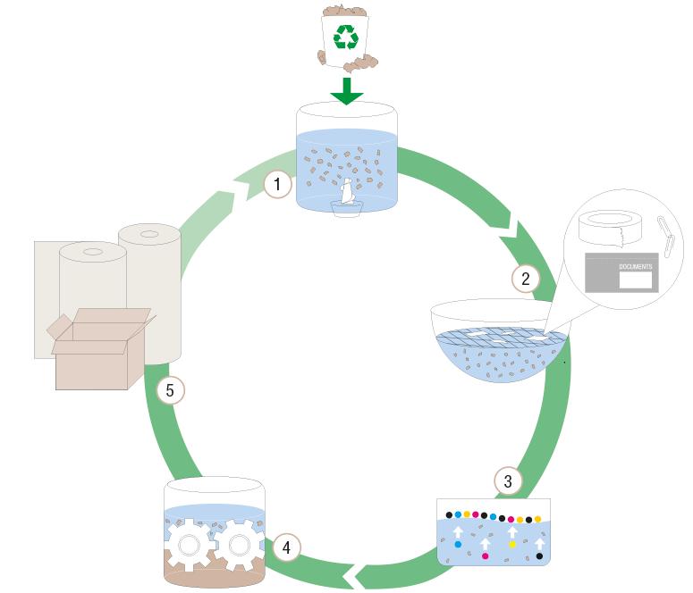 Kreislauf Papierrecycling