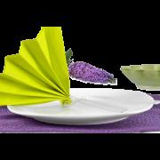 Serviette en ouate de cellulose colorée 33x33 cm, 1/4-pli